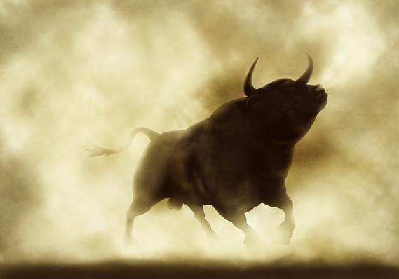 """华尔街的一些人,例如美银美林的首席投资员Michael Hartnett,就已经开始了倒数庆祝:""""美国股市准备开香槟:还有14个交易日,标普500的牛市就将成为历史上最长的一次牛市——为期3543天,""""他在一份报告中表示。"""
