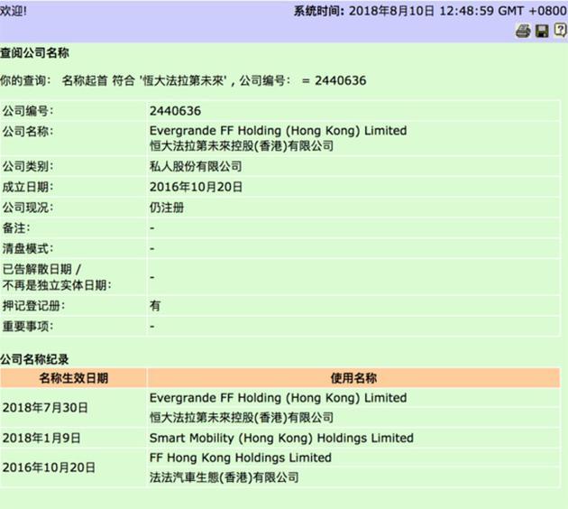 恒大法拉第未来控股(香港)有限公司