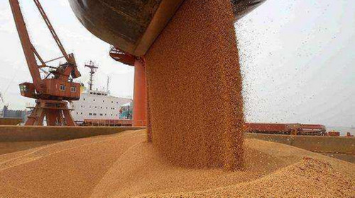 外媒:又一艘满载美国大豆的船正在驶向中国