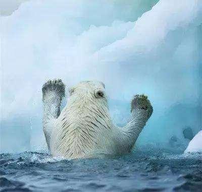 北极冻土融化释放温室气体,全球变暖可能加速