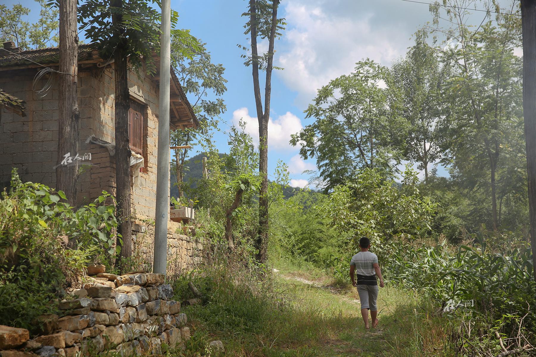 《在人间》第161期:一个农村高三毕业生的暑假
