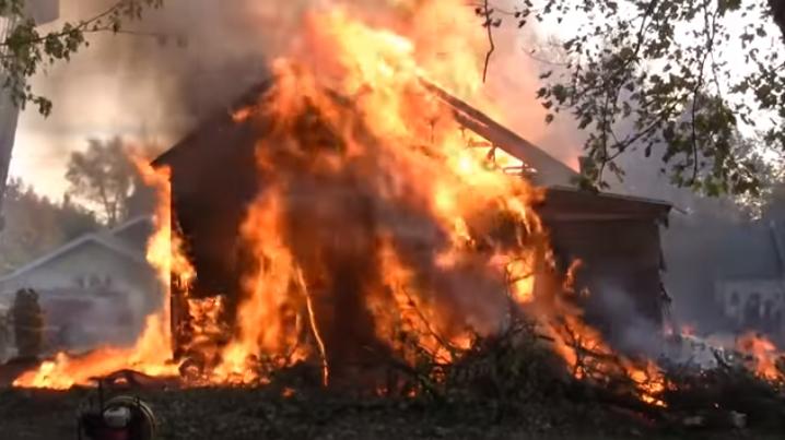 居民家中蟑螂肆虐 消防员赶到现场把房子烧了