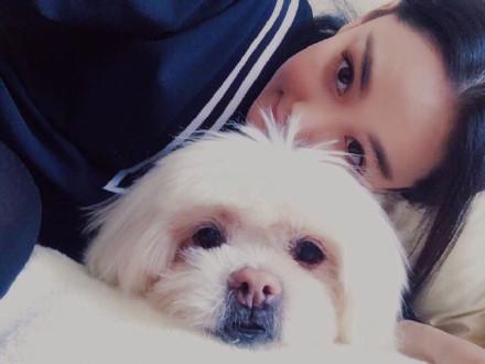 张馨予发文悼念陪伴18年的爱犬:谢谢你陪我长大