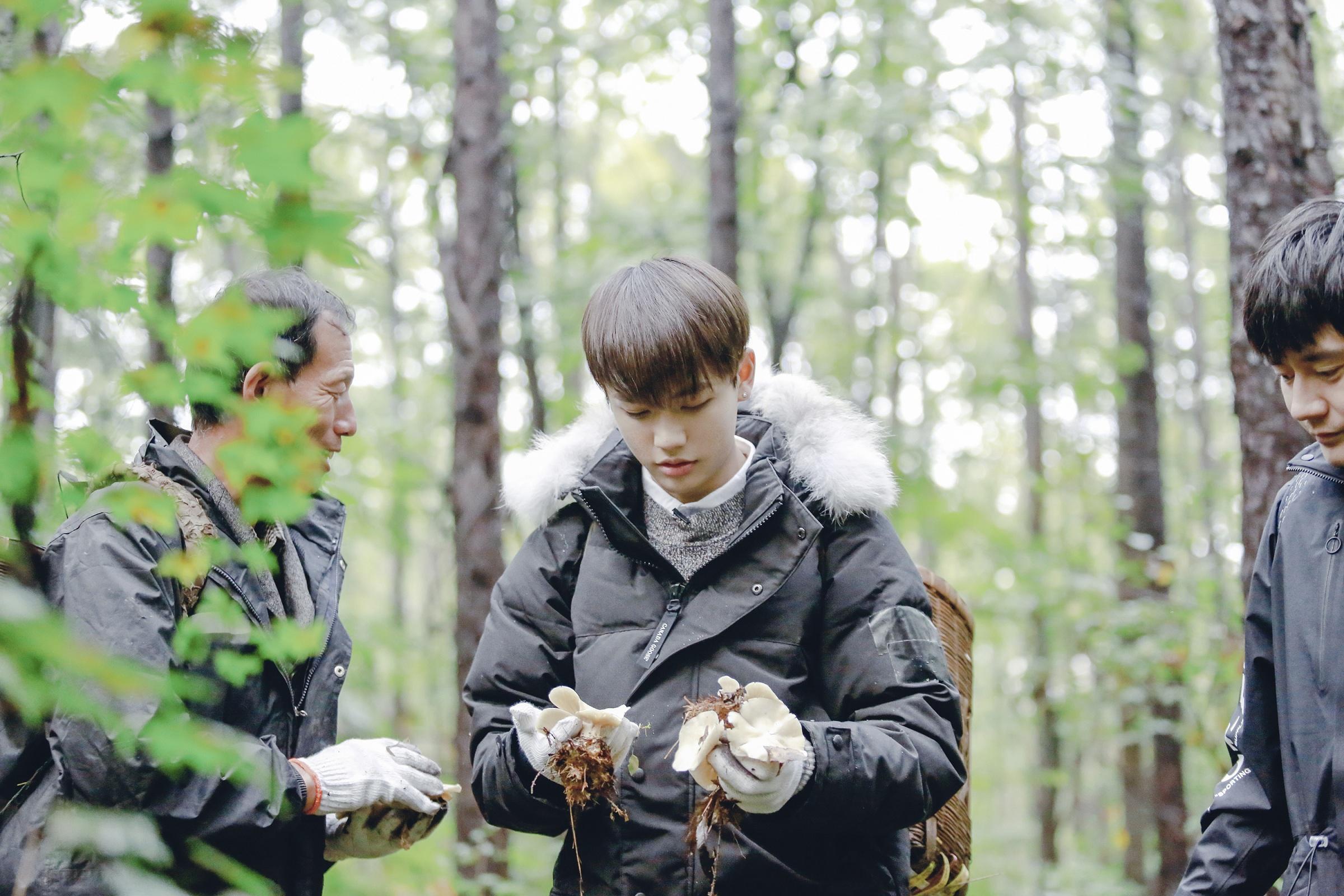 《野生厨房》采蘑菇的小男孩上线  林彦俊迷失森林