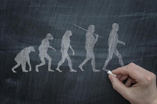 """研究发现:基因使人类变成""""肥胖的灵长类动物"""""""