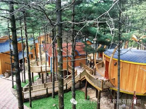 洛阳白云山森林度假木屋,已于五一盛世开幕!