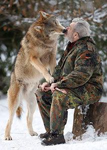 男子与狼群生活成狼王