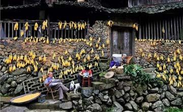 中国竟有这样的农村房 泥墙青瓦依水而建清净古朴