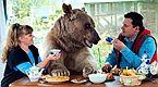 俄夫妇养270斤巨熊23年 同桌进餐教做家务