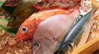 实拍活鱼被冻成冰块 放入水盆后发生奇迹!