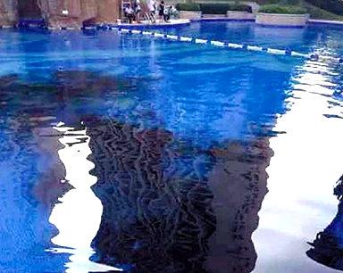 """台州一小区游泳池被业主倒墨汁 因不满""""外人""""太多"""