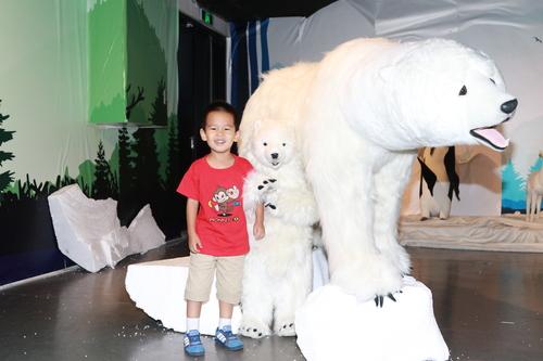 动物系列巡回展北京揭幕