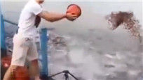 男子将鱼饲料整桶倒水中 下秒画面嗨爆了