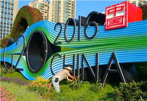 G20主题花坛扮靓杭州街头