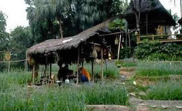 中国最大村庄 相当于一个深圳三分之一上海