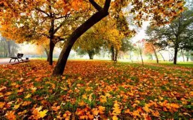 秋季爬山穿衣打扮