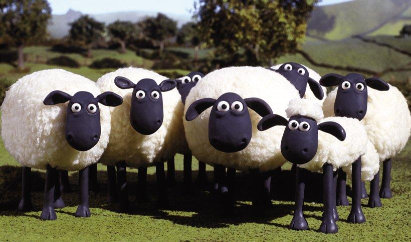 现实版小羊肖恩 黑得要伸出舌头才能看见它的脸