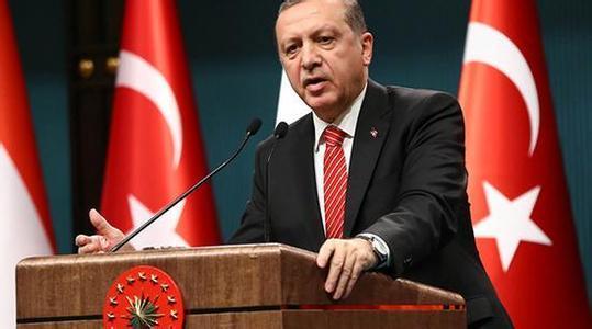 有图有视频!土耳其总统:已掌握美军支持IS证据