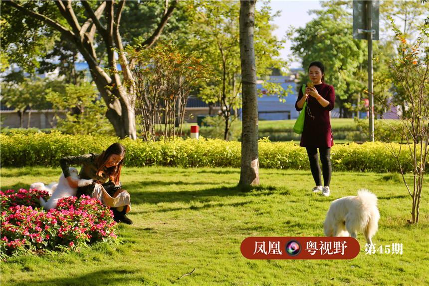 市民游客在草坪上休息玩耍。