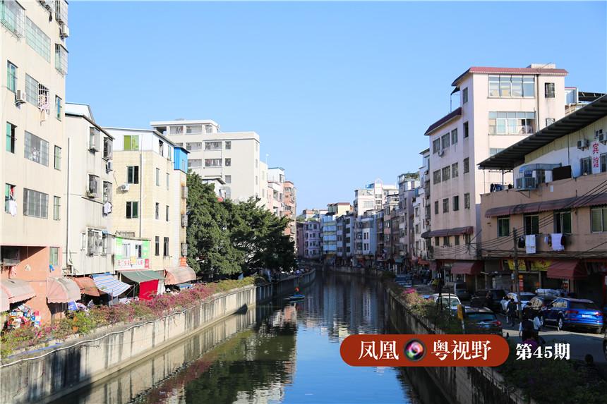 上涌河道水质明显改善,河道漂浮物大大减少。