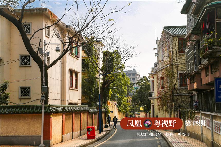 广州东山新河浦路、恤孤院路一带,清静而整洁。马路不宽,两边却生长着葱郁的古木。最引人注目的,莫过于掩映其间的一栋栋洋房民居楼。