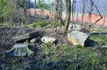 有石龟有石塔 南京青龙山树林里发现明代寺庙遗址