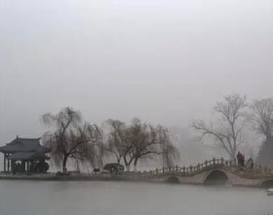 湖水映倒影 屋隐垂柳间 大明湖这么美!