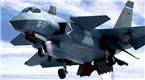 中国垂直起降战机曝光 采用鸭翼布局隐身设计