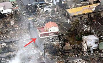 大火烧毁120栋房子唯它幸存 原来是这个原因(图)