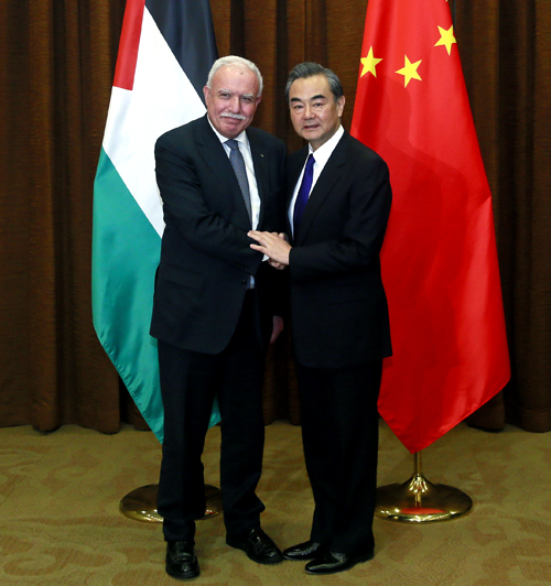 王毅:解决巴勒斯坦问题,重要的是付诸行动(图)