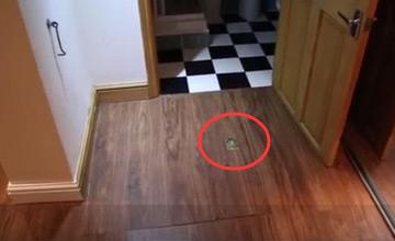 男子买房竟发现神秘地下室 进去后吓得要马上搬家