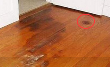 用食盐泡水拖地 木地板在夏季再也不会湿答答