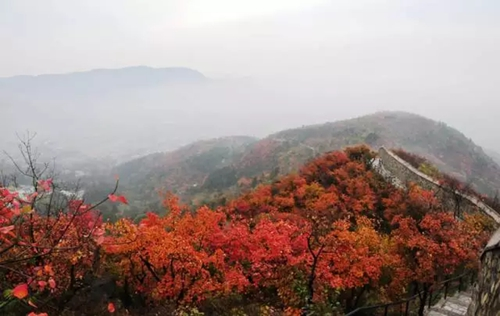 邂逅最美红叶感受最浓秋韵 2017照金香山红叶季即将启幕