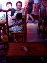 饭馆天降活物吓坏食客
