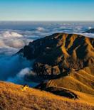 武功山的秋景,你一定要去看看
