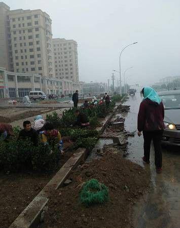 淄博这条路11月底全面竣工!市民可以跑步、看风景