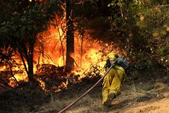 美加州火灾已致38人罹难10万居民撤离
