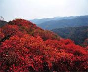 遇见浮戏山最美秋色