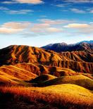 高山上的草原,光影下的武功山