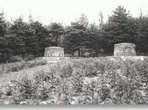 古墓夜影——珍妃墓被盗真相