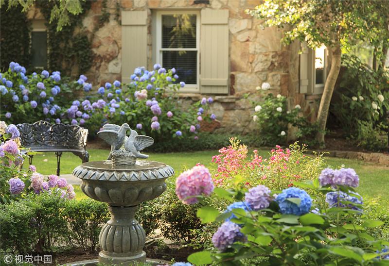 别人家的秘密花园