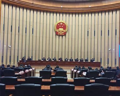 市人大常委会会议决定任命陆克华为重庆市副市长