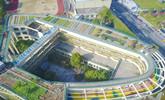 杭州:小学教学楼屋顶变身生态农场