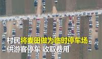 村民设麦田为停车场遭质疑 官方回应:你是没在农村待过