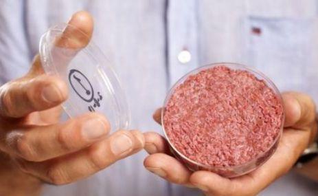 """美科学家用干细胞培育出""""人造肉"""" 或与李嘉诚合作"""