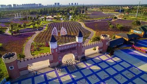 洛阳·中国薰衣草庄园——一座浪漫的爱情主题庄园