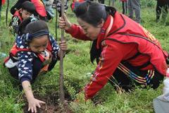 江津:今年计划营造林15.5万亩