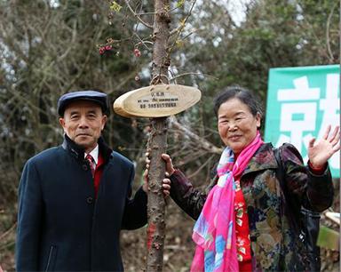 """南岳景区启动第二届""""我在寿岳有棵树""""活动"""