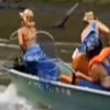美国的亚洲鲤鱼灾区用5千伏电电鱼的后果