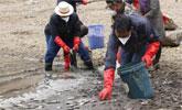 香格里拉近10吨鱼类死亡 因湖水污染和群众放生